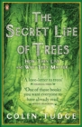 The Secret Life of Trees : How They Live and Why They Matter - Book