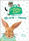 Dr KittyCat is Ready to Rescue: Clover the Bunny - Book