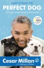 How to Raise the Perfect Dog : Through Puppyhood and Beyond - Book