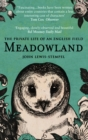Meadowland : the private life of an English field - eBook