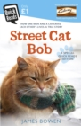 Street Cat Bob : How one man and a cat saved each other s lives. A true story. - eBook