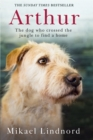 Arthur : The Dog Who Crossed the Jungle to Find a Home - Book