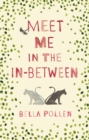 Meet Me in the In-Between - Book