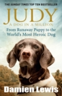 Judy: A Dog in a Million : From Runaway Puppy to the World's Most Heroic Dog - Book