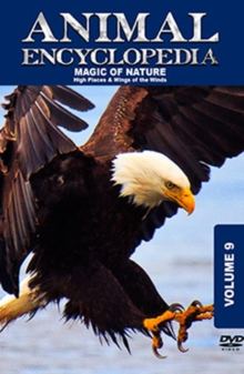 Animal Encyclopedia: Volume 9 - High Places and Wings of the Wind, DVD  DVD