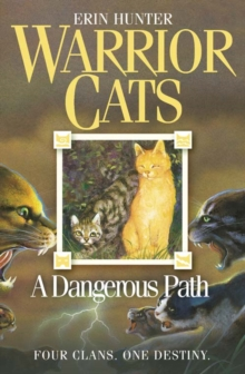 A Dangerous Path, Paperback Book