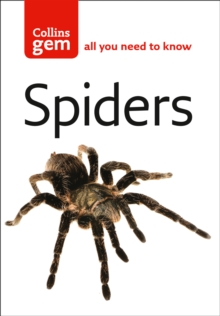 Spiders, Paperback Book