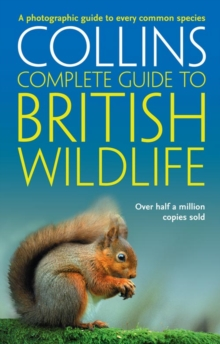 British Wildlife : A Photographic Guide to Every Common Species, Paperback Book