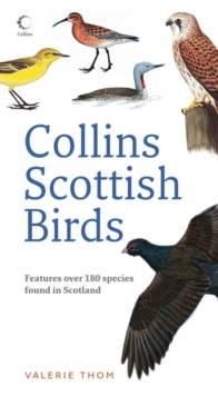 Collins Scottish Birds, Paperback Book