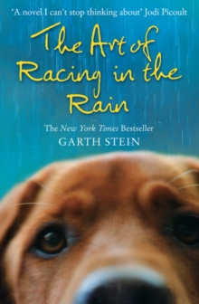 The Art of Racing in the Rain, Paperback Book