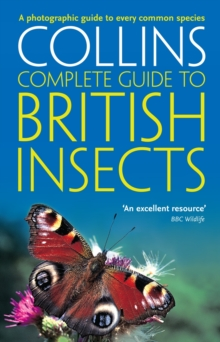 British Insects : A Photographic Guide to Every Common Species, Paperback Book