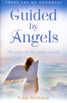 Guided By Angels : There are No Goodbyes, My Tour of the Spirit World, Paperback Book