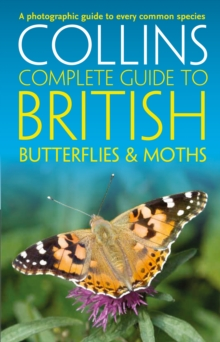 British Butterflies and Moths, Paperback Book