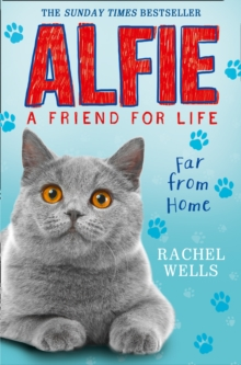 Alfie Far from Home, Paperback Book