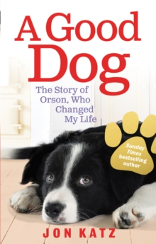 A Good Dog : The Story of Orson, Who Changed My Life, Paperback Book