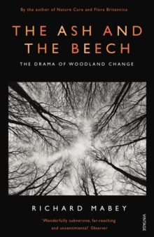 The Ash and the Beech : The Drama of Woodland Change, Paperback Book