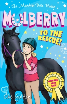 The Meadow Vale Ponies: Mulberry to the Rescue!, Paperback Book