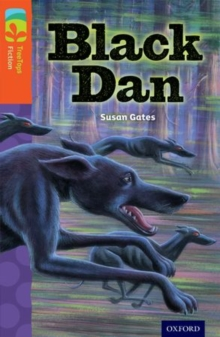 Oxford Reading Tree TreeTops Fiction: Level 13 More Pack A: Black Dan, Paperback Book