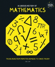 A Curious History of Mathematics : The Big Ideas from Primitive Numbers to Chaos Theory, Paperback Book