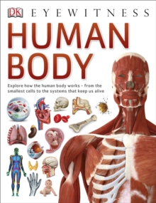 Human Body, Paperback Book