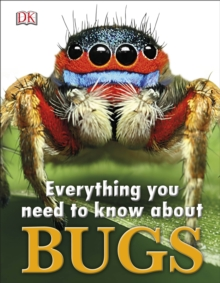 Everything You Need to Know About Bugs, Hardback Book