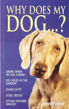 Why Does My Dog...?, Paperback Book