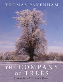 The Company of Trees : A Year in a Lifetime's Quest, Hardback Book