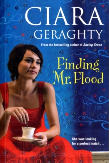 Finding Mr. Flood, Paperback Book