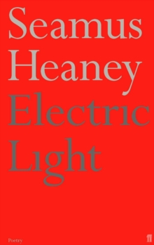 Electric Light, Paperback Book