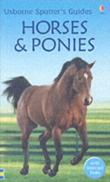 Horses And Ponies, Paperback Book
