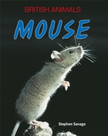 Mouse, Paperback Book