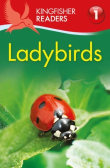 Kingfisher Readers: Ladybirds (Level 1: Beginning to Read), Paperback Book