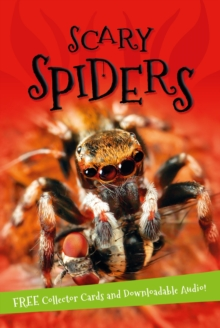 It's All About... Scary Spiders, Paperback Book