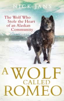 A Wolf Called Romeo, Paperback Book