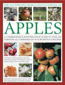 The Illustrated World Encyclopedia of Apples : a Comprehensive Identification Guide to Over 400 Varieties Accompanied by 95 Scrumptious Recipes, Hardback Book