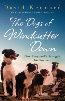 The Dogs of Windcutter Down : One Shepherd's Struggle for Survival, Paperback Book