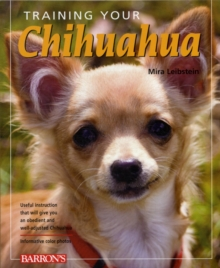 Training Your Chihuahua, Paperback Book
