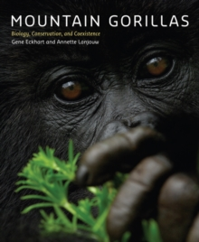 Mountain Gorillas : Biology, Conservation, and Coexistence, Hardback Book