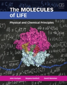 The Molecules of Life : Physical and Chemical Principles, Paperback Book