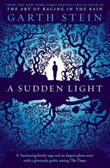 A Sudden Light, Paperback Book