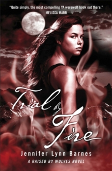 Trial by Fire, Paperback Book