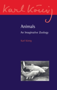 Animals : An Imaginative Zoology, Paperback Book