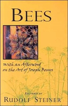 Bees : Nine Lectures on the Nature of Bees, Paperback Book