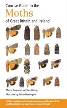 Concise Guide to the Moths of Great Britain and Ireland, Paperback Book