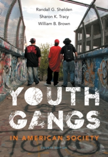 Youth Gangs in American Society, Paperback Book
