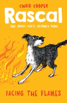 Rascal: Facing the Flames, Paperback Book