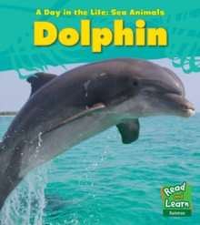 Dolphin, Paperback Book