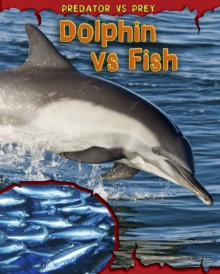 Dolphin vs Fish, Paperback Book