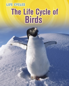 The Life Cycle of Birds, Hardback Book
