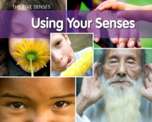 Using Your Senses?, Hardback Book